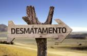 """Desmatamento"" (In portuguese - Reforestation) wooden sign — Foto de Stock"