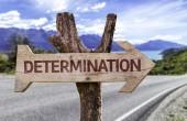 Determination wooden sign — Stock Photo