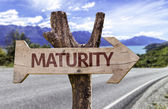 Maturity  wooden sign — Stock Photo