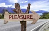 Pleasure wooden sign — Stock Photo