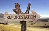 Reforestation wooden sign — Foto de Stock