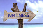 Wellness wooden sign with a beach on background — Stock Photo