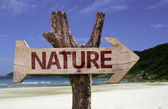 Nature wooden sign with a beach on background — Stock Photo