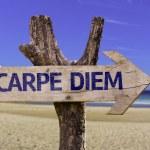 Carpe Diem wooden sign — Stock Photo #55175093