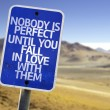 Nobody is Perfect Until You Fall In Love With Them sign — Stock Photo #59676733