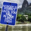 Nobody is Perfect Until You Fall In Love With Them sign — Stock Photo #59676737