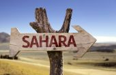 Sahara wooden sign — Stock Photo