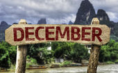 December sign with a forest — Stock Photo