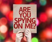 Are You Spying On Me? card — Stock Photo