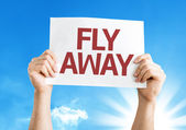 Fly Away card — Stock Photo