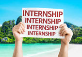 Internship card in hands — Stock Photo