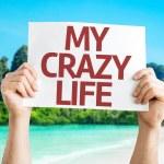 My Crazy Life sign — Stock Photo #63651945