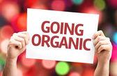 Going Organic card — Stock Photo
