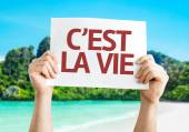 That's Life (in French) card — Stock Photo
