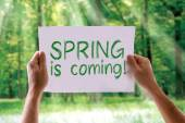Spring is Coming card — Stock Photo