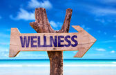 Wellness wooden sign — Stock Photo