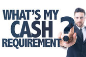 Text: What's My Cash Requirement? — Stock Photo
