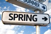 Spring direction sign — Stock Photo