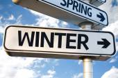 Winter direction sign — Stock Photo