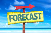 Forecast text sign — Stock Photo