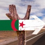 Algeria Flag wooden sign — Stock Photo #73421095