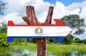 Paraguay Flag wooden sign — Stock Photo