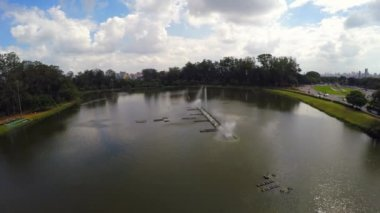 Ibirapuera Park in Sao Paulo — Stock Video