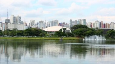 Fountains in Ibirapuera Park — Stock Video