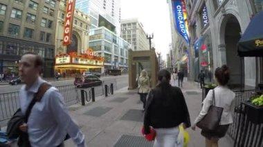 Pedestrians are crossing the Michigan Avenue — Stock Video