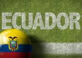 Soccer field with the text Ecuador — Stock Photo