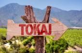 Tokaj wooden sign — Stock Photo