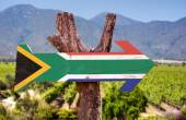 South Africa Flag wooden sign — Stock Photo