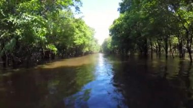 Boat Trip At the Amazon River — Stock Video