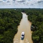 Постер, плакат: Amazon River in Brazil