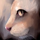 Digital painting cat face closeup — Stock Photo