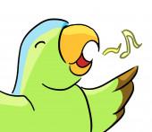 Cartoon animal expression parrot sing — Stockfoto