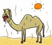 Cartoon animal expression camel hot — Stockfoto