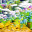 Abstract blur background and soft colorful nature — Stock Photo #67448059