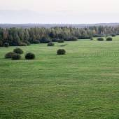 Green fields aerial view from view tower — Stock fotografie