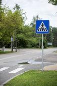 Linee su asfalto e segnaletica stradale — Foto Stock