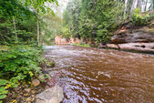 Mountain river with Flowing Water Stream and sandstone cliffs — Foto de Stock