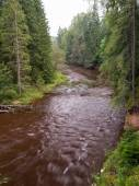 Mountain river with Flowing Water Stream and sandstone cliffs — Stockfoto