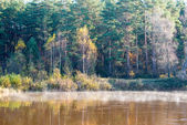 Scenic autumn colored river in country — Stock Photo