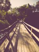 Scenic and beautiful tourism trail in the woods near river . Vin — Foto Stock
