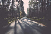 Morning sun beams over autumn road. Vintage. — Stock Photo