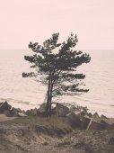 Rocky beach in the baltic sea. Vintage. — Stockfoto