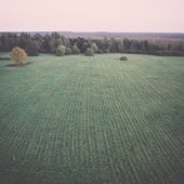 Green fields aerial view from view tower. Vintage. — 图库照片