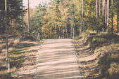 Country gravel road in the forest. Vintage. — 图库照片