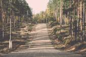 Country gravel road in the forest. Vintage. — Stock Photo