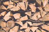 Stacked firewood of spruce in the forest. Vintage. — Foto de Stock